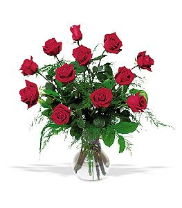 send red rose flowers zambia